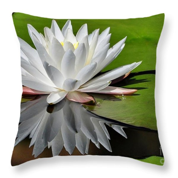 Softly Throw Pillow by Kathy Baccari