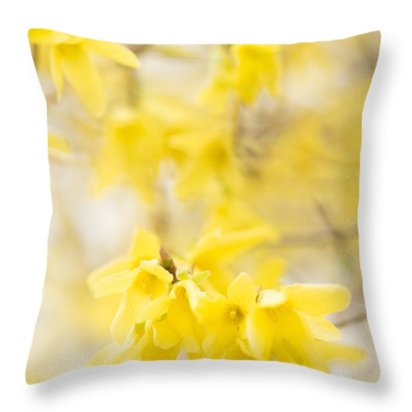Softly Yellow Throw Pillow by Anne Gilbert