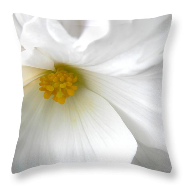Softness of a White Begonia Flower Throw Pillow by Jennie Marie Schell