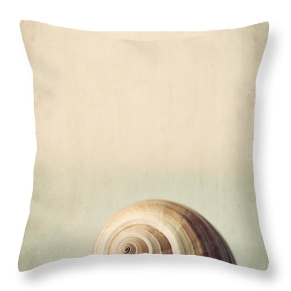 Sojourn Throw Pillow by Amy Weiss