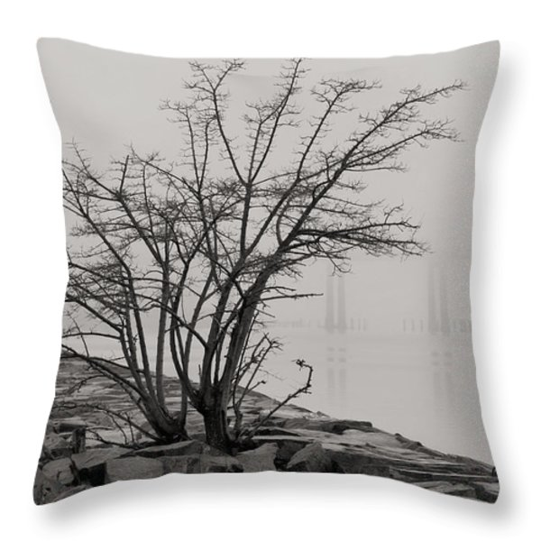 Solitary  Throw Pillow by JC Findley