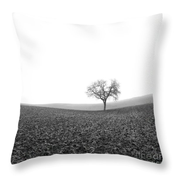 Solitary tree in winter. Auvergne. France Throw Pillow by BERNARD JAUBERT