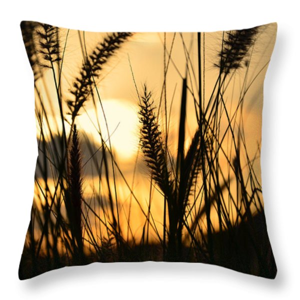 solstice Throw Pillow by Laura  Fasulo