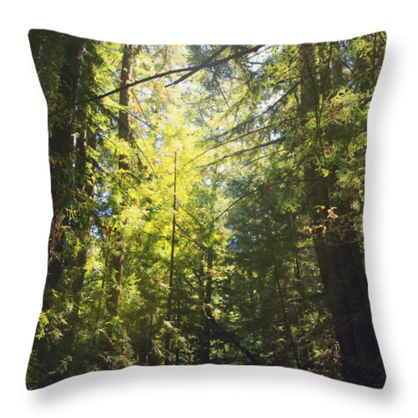 Some Days Really Shine Throw Pillow by Laurie Search