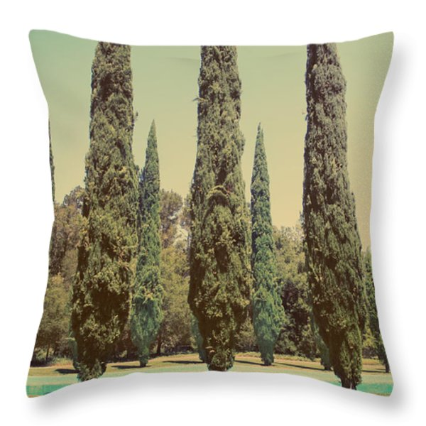 Some Of Your Attention Throw Pillow by Laurie Search