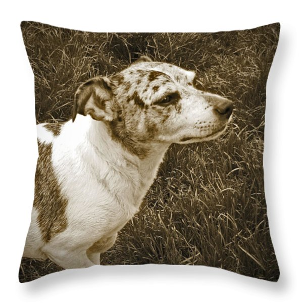 Something In The Air Throw Pillow by Adri Turner