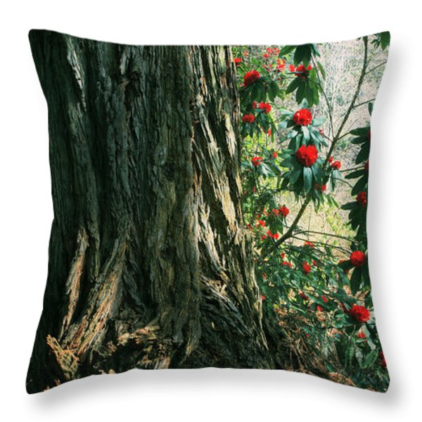 Sometimes Life Is Sweet Throw Pillow by Laurie Search