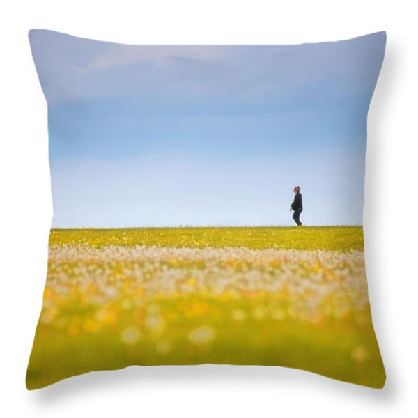 Sometimes We All Walk Alone Throw Pillow by Karol  Livote