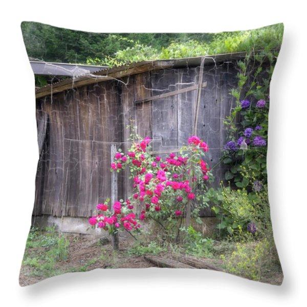 Somewhere Near Geyserville Ca Throw Pillow by Joan Carroll