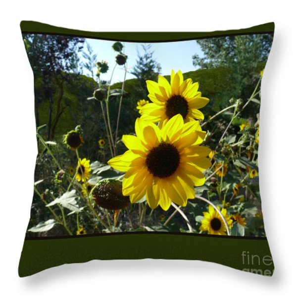 Song Of The Sunflower Throw Pillow by Jacquelyn Roberts