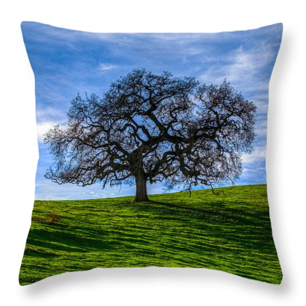 Sonoma Tree Throw Pillow by Chris Austin