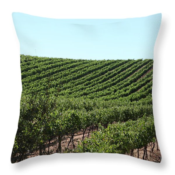 Sonoma Vineyards In The Sonoma California Wine Country 5d24588 Throw Pillow by Wingsdomain Art and Photography