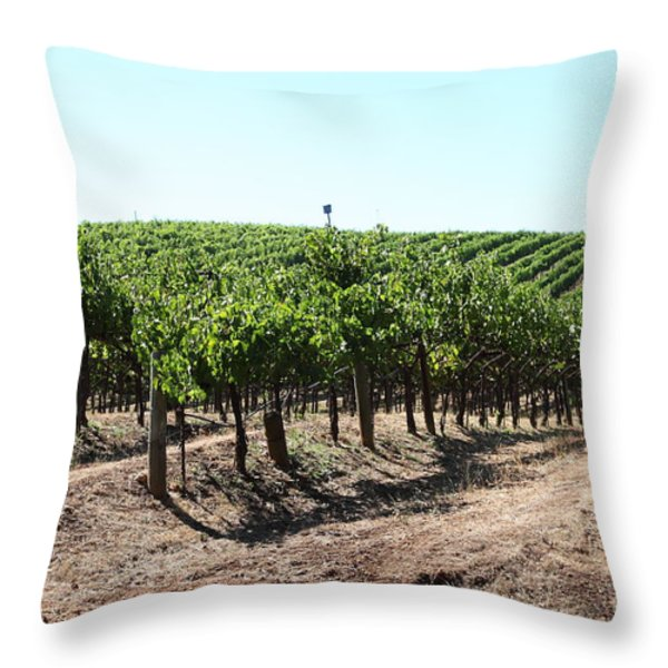 Sonoma Vineyards In The Sonoma California Wine Country 5d24598 Throw Pillow by Wingsdomain Art and Photography