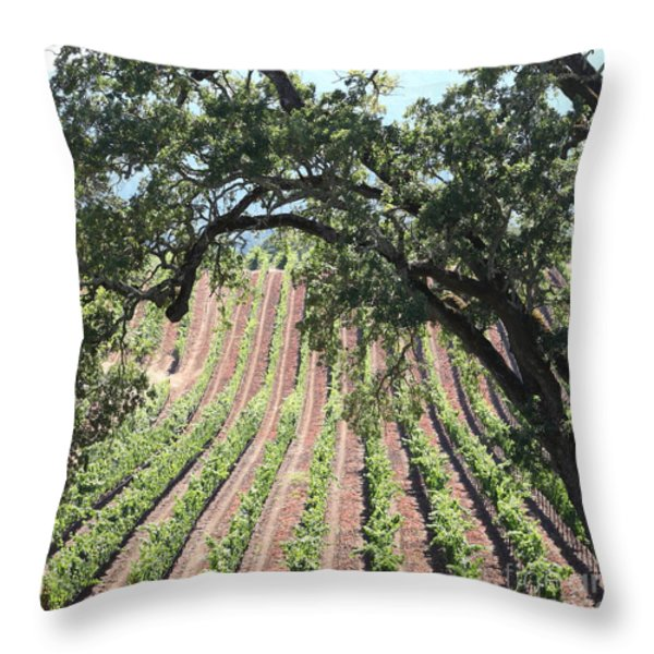 Sonoma Vineyards In The Sonoma California Wine Country 5d24619 Square Throw Pillow by Wingsdomain Art and Photography