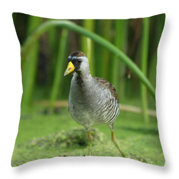 Sora Motion Portrait Throw Pillow by James Peterson