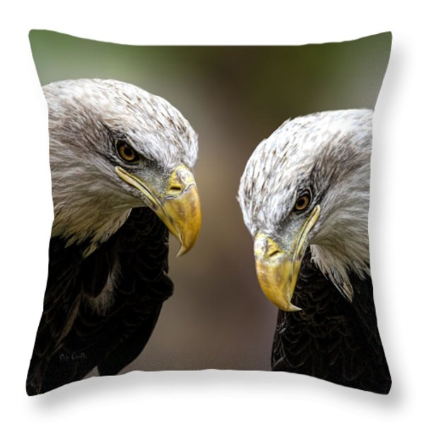 Soul Mates Throw Pillow by Bob Orsillo