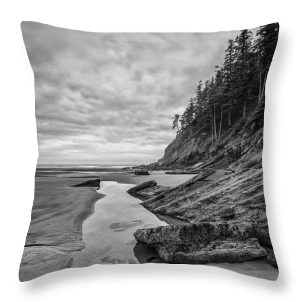 Soul without Color Throw Pillow by Jon Glaser
