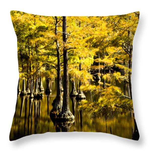 Sounds Of Time Throw Pillow by Karen Wiles