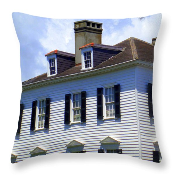South Battery Beauty Throw Pillow by Randall Weidner