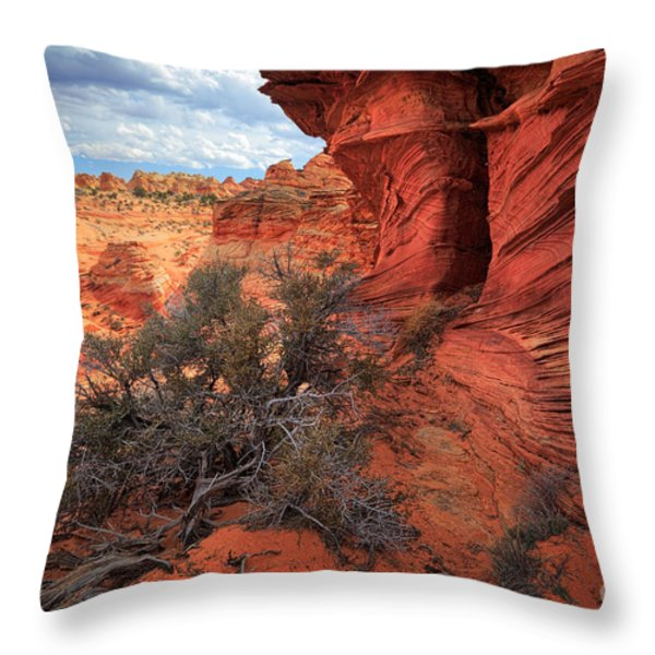 South Coyote Buttes Grand View Throw Pillow by Inge Johnsson