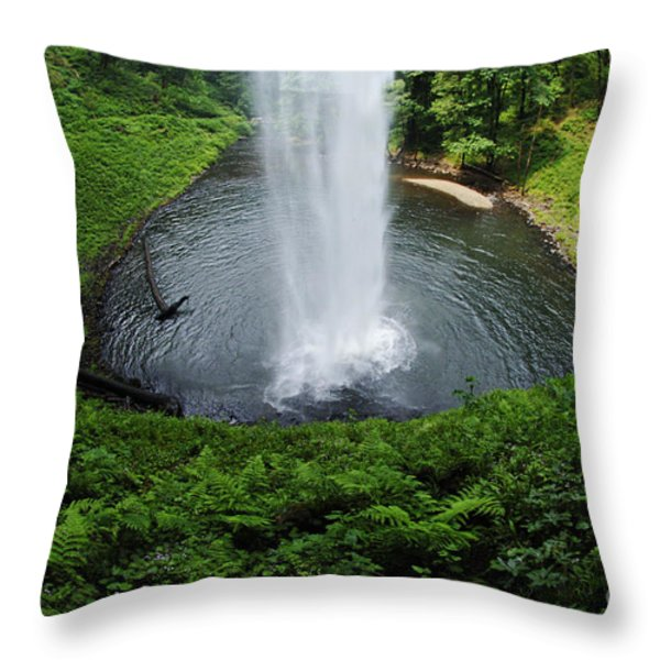 South Falls Oregon Throw Pillow by Bob Christopher
