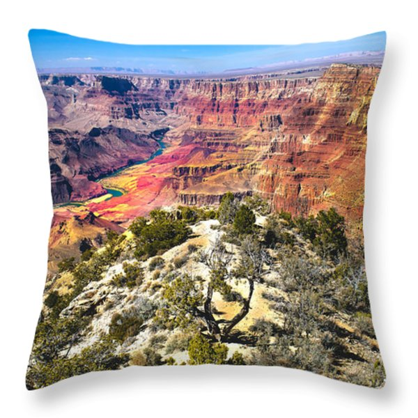 South Rim From The Butte Throw Pillow by Robert Bales