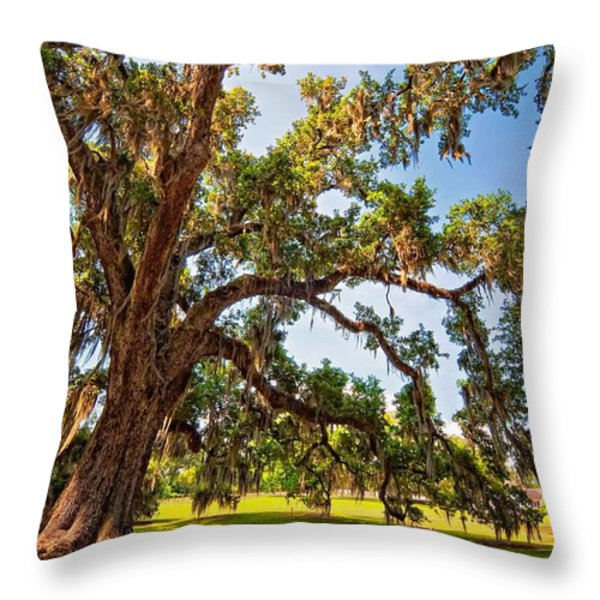 Southern Comfort Throw Pillow by Steve Harrington