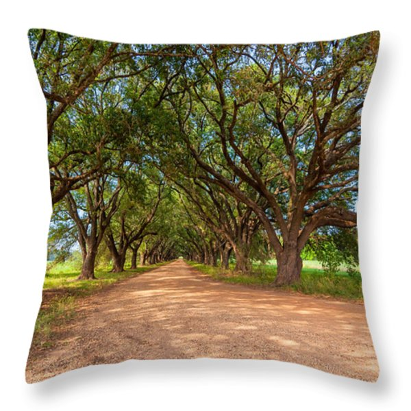 Southern Journey Throw Pillow by Steve Harrington