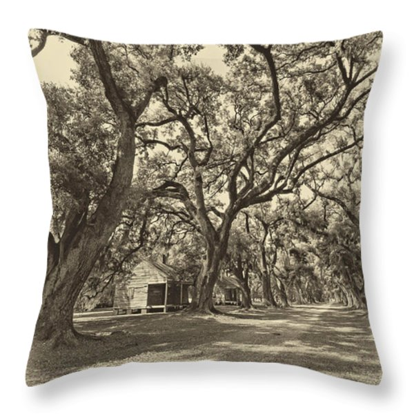 Southern Lane sepia Throw Pillow by Steve Harrington