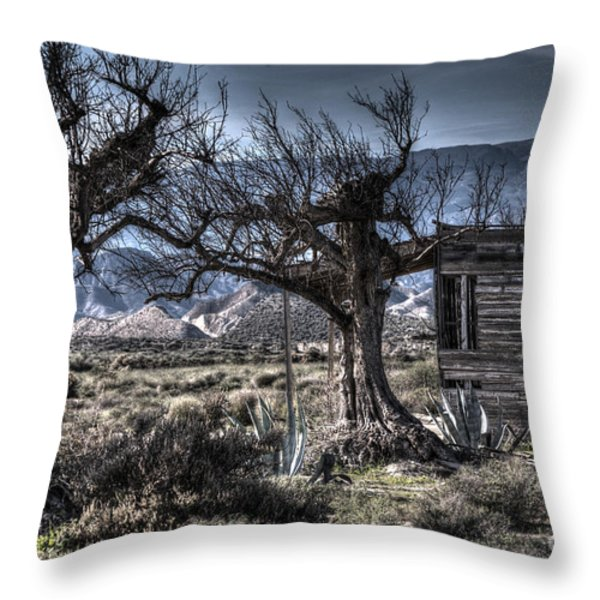 Spanish Desert Throw Pillow by Heiko Koehrer-Wagner