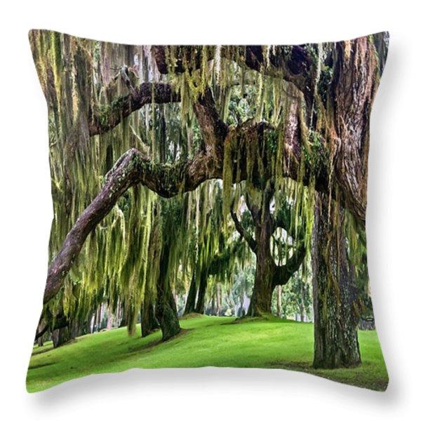 Spanish Moss Throw Pillow by Debra and Dave Vanderlaan