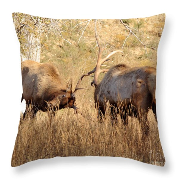 Sparring Elk Throw Pillow by Robert Frederick