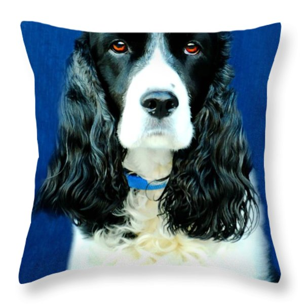 Speaking of Annie Throw Pillow by Diana Angstadt