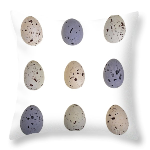 Speckled egg tic-tac-toe Throw Pillow by Jane Rix