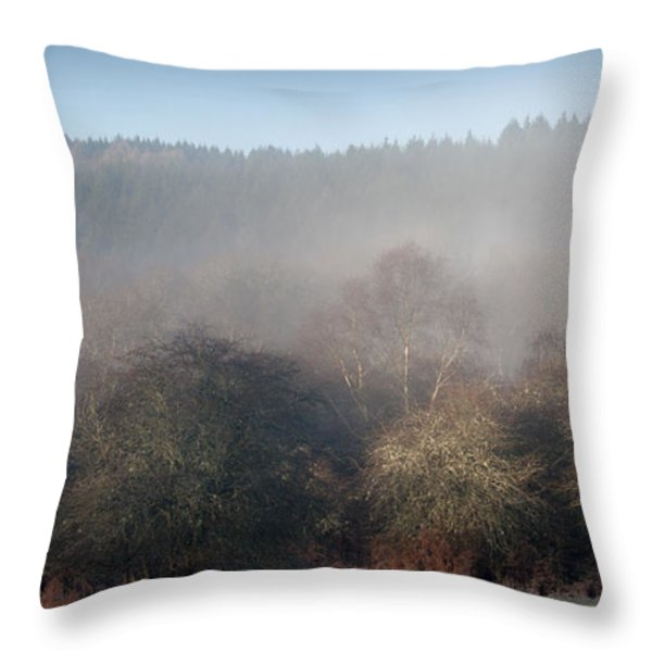Speculation Throw Pillow by David Tinsley