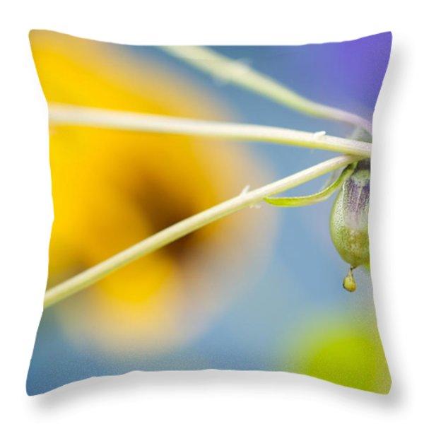 Spent Throw Pillow by Lisa Knechtel