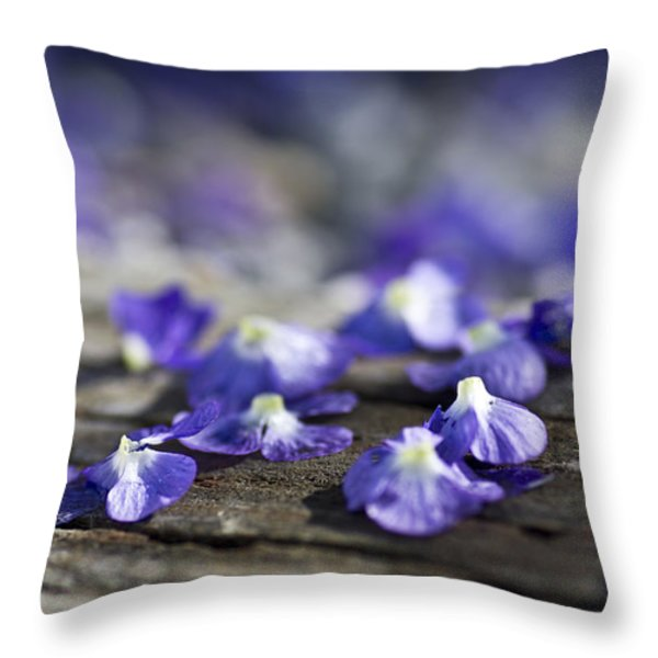 Spent Throw Pillow by Priya Ghose