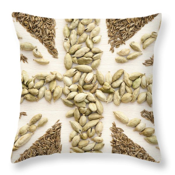 Spice Flag Throw Pillow by Anne Gilbert