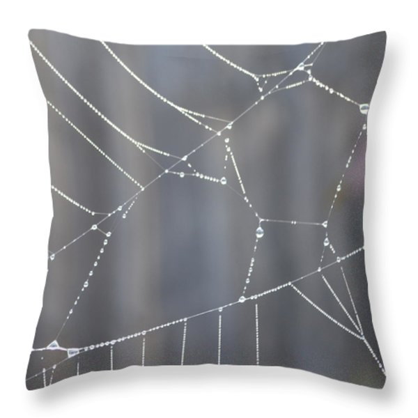 Spider Web In Rain Throw Pillow by Cheryl Miller