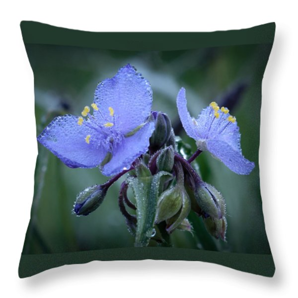 Spiderwort Throw Pillow by James Barber