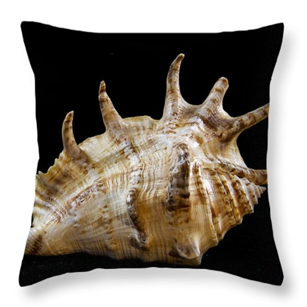 Spikes back side Throw Pillow by Jean Noren