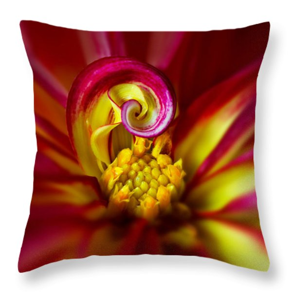 Spiral Throw Pillow by Mary Jo Allen