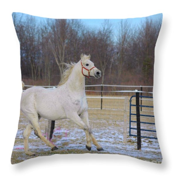 Spirited Horse Throw Pillow by Kathleen Struckle
