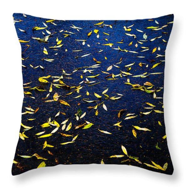Splashes Of Sun Throw Pillow by Alexander Senin