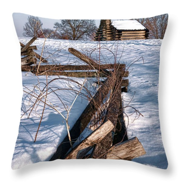 Split Rail and Nation Throw Pillow by Olivier Le Queinec
