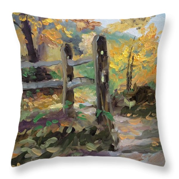 Split Rail Fence Throw Pillow by Spencer Meagher