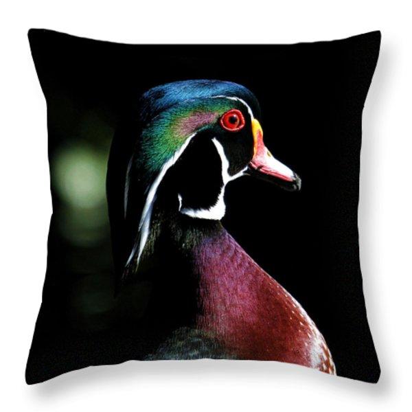 Spotlight Wood Duck Throw Pillow by Steve McKinzie