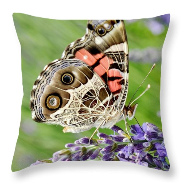 Spotted Butterfly Throw Pillow by Kim Bemis