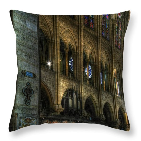 Spreading The Word Throw Pillow by Douglas J Fisher