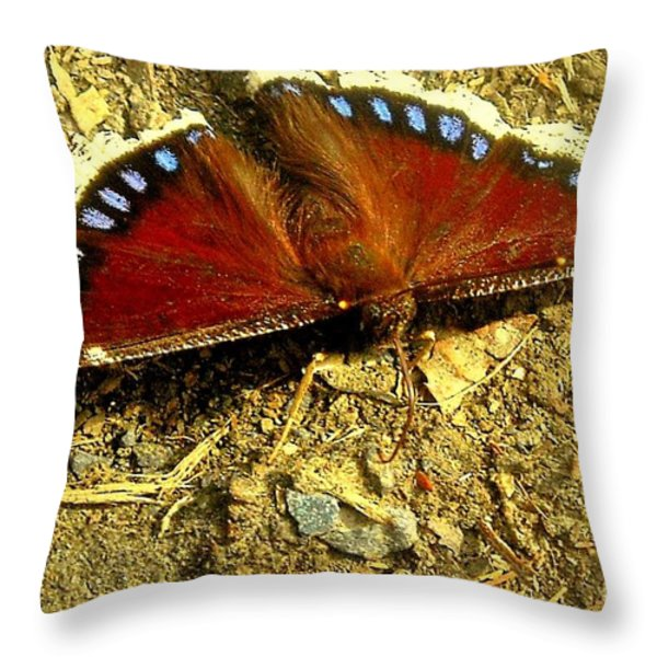 Spring ... To Life Throw Pillow by Tami Quigley
